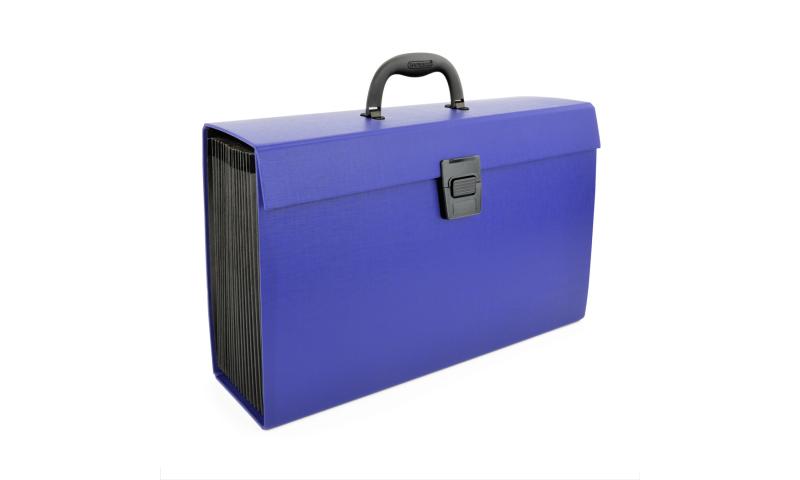 Rapesco Expanding Box File Document Organiser 19 Pocket (New Lower Price for 2021)