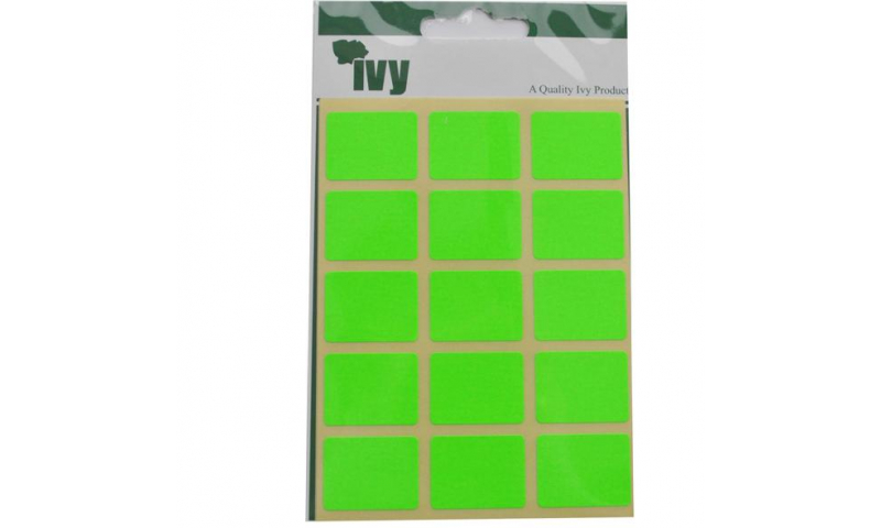 IVY Flourscent  Rectangular Labels 60 per Pack 19x25mm - Green