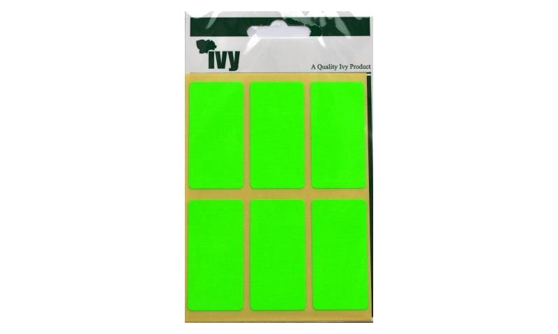 IVY Flourscent  Rectangular Labels 24 per Pack 25x50mm - Green