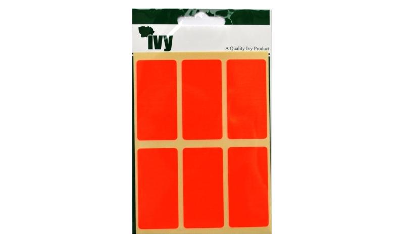 IVY Flourscent  Rectangular Labels 24 per Pack 25x50mm - Orange