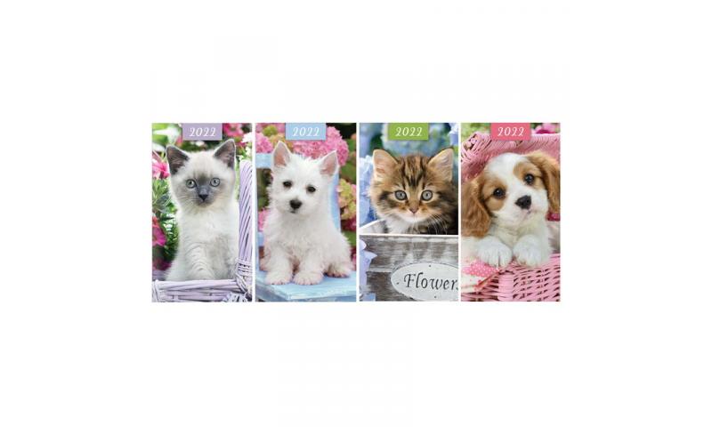 Kittens & Puppies, 2022 Slim Pocket Diary, 4 Asstd in CDU
