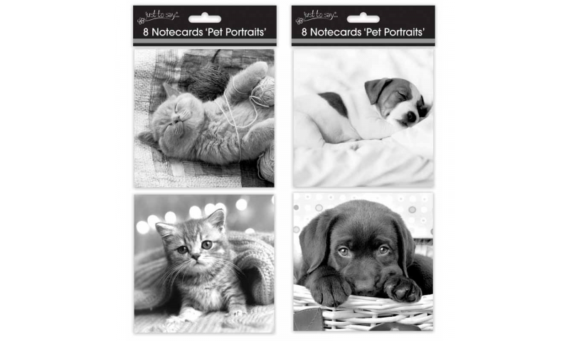 Just to Say Note Cards, 4 Pets Designs, Large 135 x 135mm, Pack of 8 (New Lower Price for 2021)