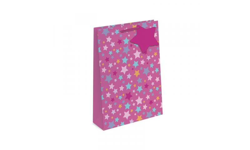 Foil Stars Gift Bags Medium, 230 x 180 x 100mm, 2 asstd