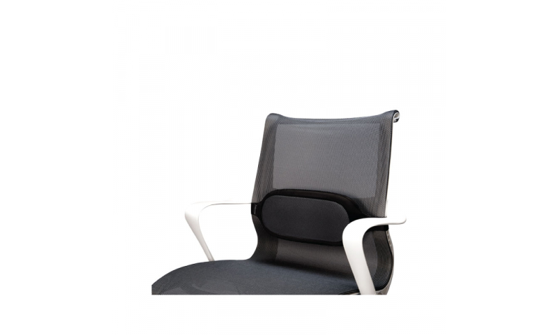 Fellowes Inspire Lumbar Chair Back Support (New Lower Price for 2021)