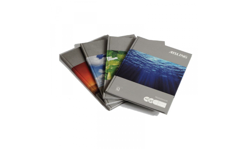 Aisling Precious Planet 9x7 Recycled Casebound Book 160 page F&M (New Lower Price for 2010)