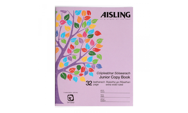 Aisling Junior Writing Copy 200x160mm 32 Page, 15mm Wide Feint, 20 Pack