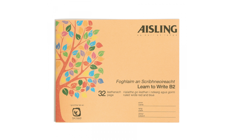 Aisling Learn to Write Copy Book 160 x200mm, 32 Page, 20 Pack