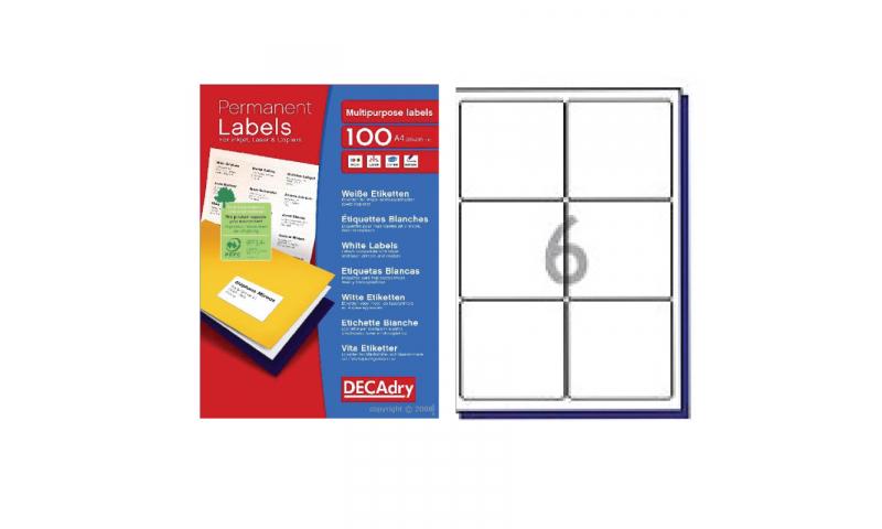 DecAdry White Multipurpose Printer Labels 100 sheet pk 99.1 x 93.1mm 6 per Sheet