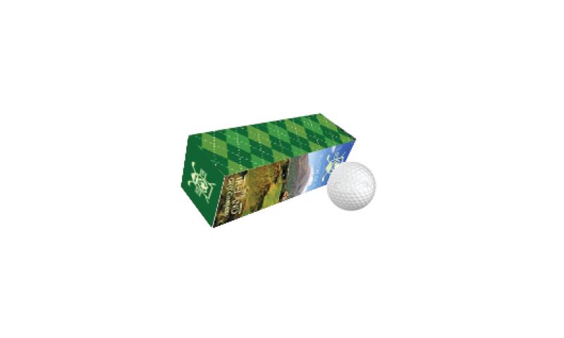 3 Pk Golf Balls in Tube