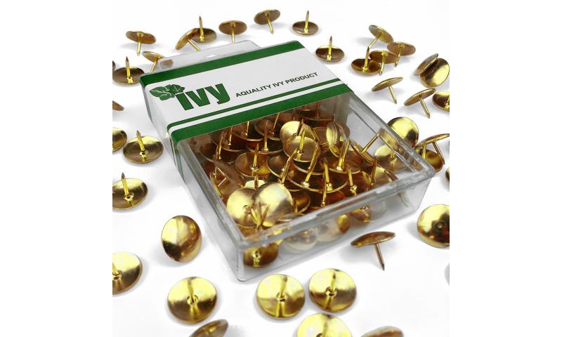 IVY Hang Tidy Box Drawing Pins Brass Solid Head 12mm, 50pcs