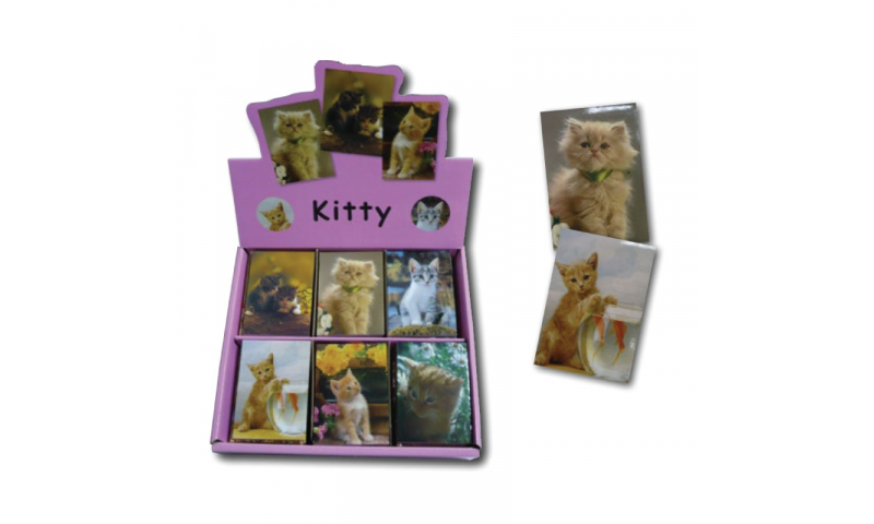 Novelty Mini Notebooks Cats, 6 Asstd