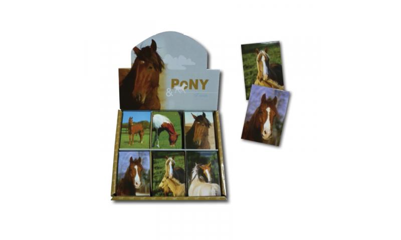 Novelty Mini Notebooks Pony & Horse, 6 Asstd