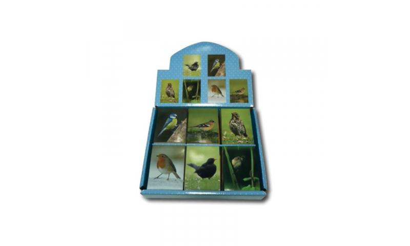 Novelty Mini Notebooks Garden Birds 6 Asstd