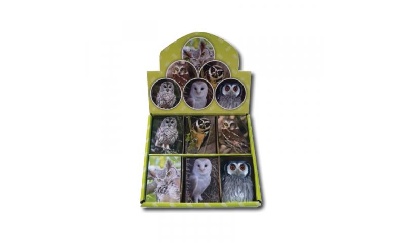 Novelty Mini Notebooks Owls 6 Asstd