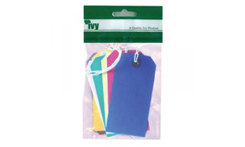 IVY Coloured Luggage Tags 108x54mm - Hangpacks of 10 (New Lower Price for 2021)