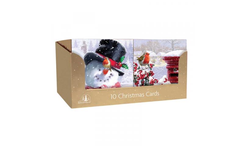 Xmas Traditional Robin & Snowscene Christmas Cards 10 Pack, 2 Asstd