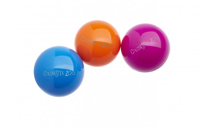 Zing Bounce Ball